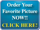 Order your favorite pictures from our Photo Gallery